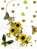 Yellow sunflowers curl with butterflies Stock Images