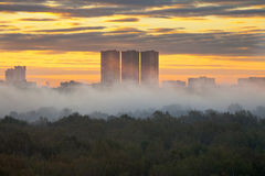 Yellow sunrise under city in autumn. Yellow sunrise and morning fog in autumn city Stock Image