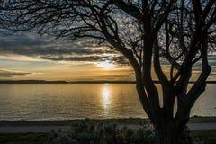 Yellow Sunset Over Puget Sound 2 Stock Photos