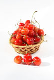 Yellow sweet cherries. Royalty Free Stock Images