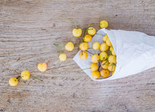 Yellow sweet-cherries in a paperbag on a rought wood surface Stock Photography