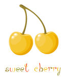 Yellow Sweet Cherry Stock Image