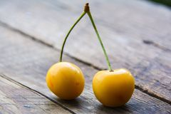 Yellow sweet cherry Stock Images