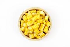 Yellow sweet corn Stock Photography