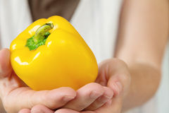 Yellow sweet pepper Stock Images