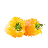 Yellow sweet peppers of blots  Stock Images