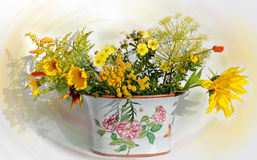 The yellow symphony. Ceramic vase with field yellow colours stock images