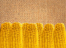 Yellow tasty corn over linen texture Stock Images