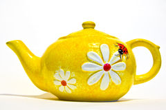 Yellow tea pot Royalty Free Stock Photo