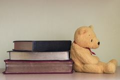 A yellow teddy bear with books Stock Image