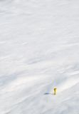 Yellow Tee in Snow. Single yellow tee on a golf course covered in snow Royalty Free Stock Photos