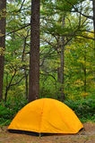 Yellow Tent at Campsite in forest Stock Image