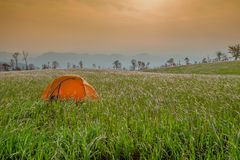 Yellow tent Field Wonderful Land Royalty Free Stock Images