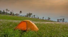 Yellow tent Field Wonderful Land Stock Photos