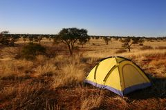 Yellow tent in the wilderness. Royalty Free Stock Photos
