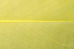 Yellow textured feather close up Stock Photos