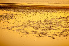 Yellow textured sand beach Stock Photos