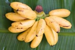 Banana on green banana leaf royalty free stock images