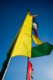 Yellow Tibetan Darchor Royalty Free Stock Photos