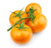 Yellow tomato Royalty Free Stock Photography