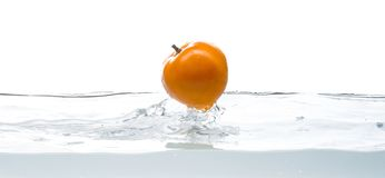 Yellow tomato fall in water. Photo in action. Drops of water.  white background. Whole, yellow and ripe tomato falls into the water. Water splashes.  picture on Stock Photo