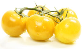 Yellow Tomatoes Stock Images