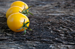 Yellow tomatoes Stock Photography
