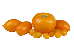 Yellow tomatoes of different varieties Stock Photography