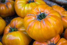 Yellow tomatoes in the market Royalty Free Stock Photos