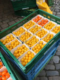 Yellow tomatoes royalty free stock images