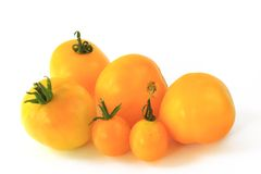 Yellow tomatoes Stock Photos