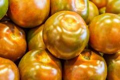 Yellow tomatoes Royalty Free Stock Photo