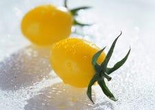 Yellow tomatos Stock Photos