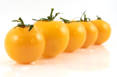 Yellow tomatos Stock Images
