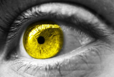 Yellow toned eye. Eye close up with yellow iris Royalty Free Stock Photo