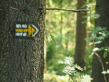 Yellow tourist sign pointing right. Yellow tourist sign pointing to the right drawn on spruce trunk in the czech woods royalty free stock photography