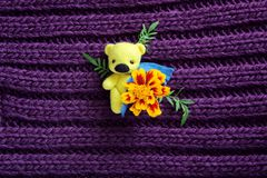 Yellow Toy Bear with Flower. Little Yellow Toy Bear with Flower Royalty Free Stock Photos