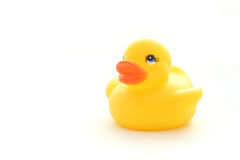 Yellow toy duck Stock Photo