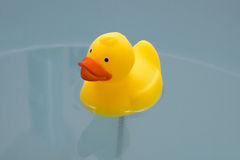 Yellow toy duck in bath with Royalty Free Stock Photos