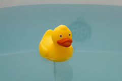 Yellow toy duck in bath with Royalty Free Stock Photo