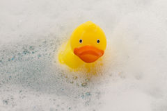 Yellow toy duck in bath with foam Royalty Free Stock Images