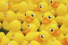 Yellow toy duck Stock Photo
