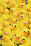 Yellow toy duck Royalty Free Stock Image