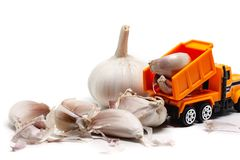 A yellow toy dump truck with garlic on white background