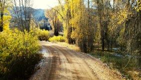 Yellow trail stock photo