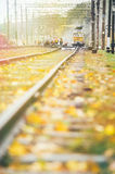The yellow train on the tracks in the fall leaves. Under the October sun and bright colors of nature Stock Photography