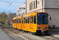 Yellow tram royalty free stock photos