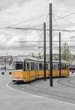 Yellow tram walking down Royalty Free Stock Image