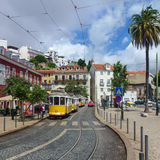 Yellow trams on a Lisbon street Stock Photos