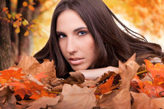 Yellow trees and girl in dry leaves Royalty Free Stock Photos